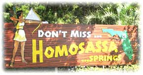 homosassa springs senior personals Homosassa springs, florida, is named after the homosassa spring, located within the heart of homosassa springs state park the springs are historical attractions with documented accounts of tourism dating all the way back to the 1880s.