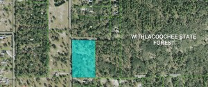 5 Wooded Acres for sale in Lecanto Florida